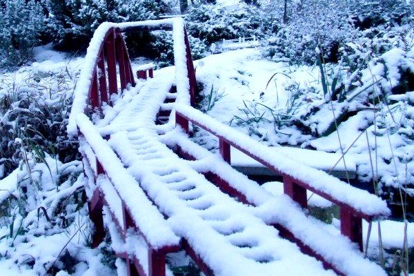 Redbridge snow.jpg