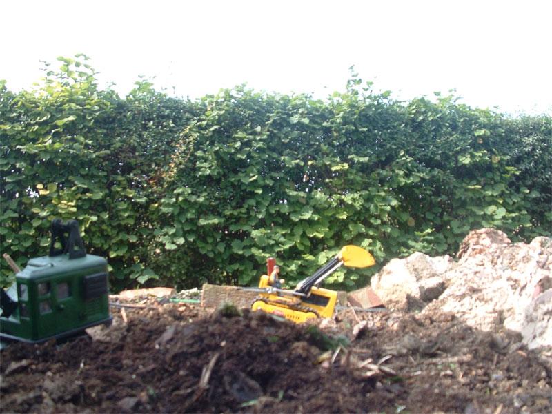 digging-pit.jpg