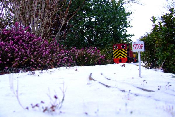 jessie-snow.jpg