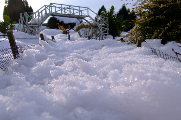 bridge-v-snowy-web.jpg