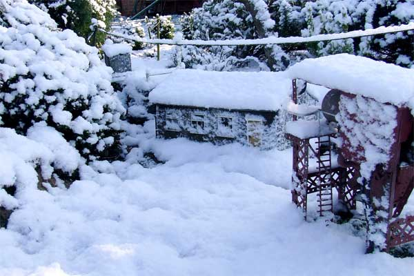 pit-in-snow-web.jpg
