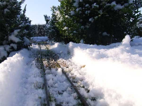 snowy-tracks-web.jpg